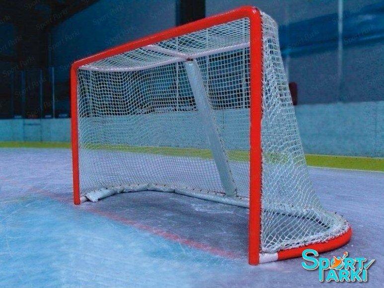 Хоккейные ворота 1