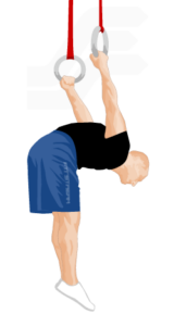 Лучшие упражнения с гимнастическими кольцами 8